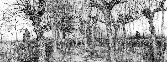 Vincent-Van-Gogh-Tree-drawings-2-700x260
